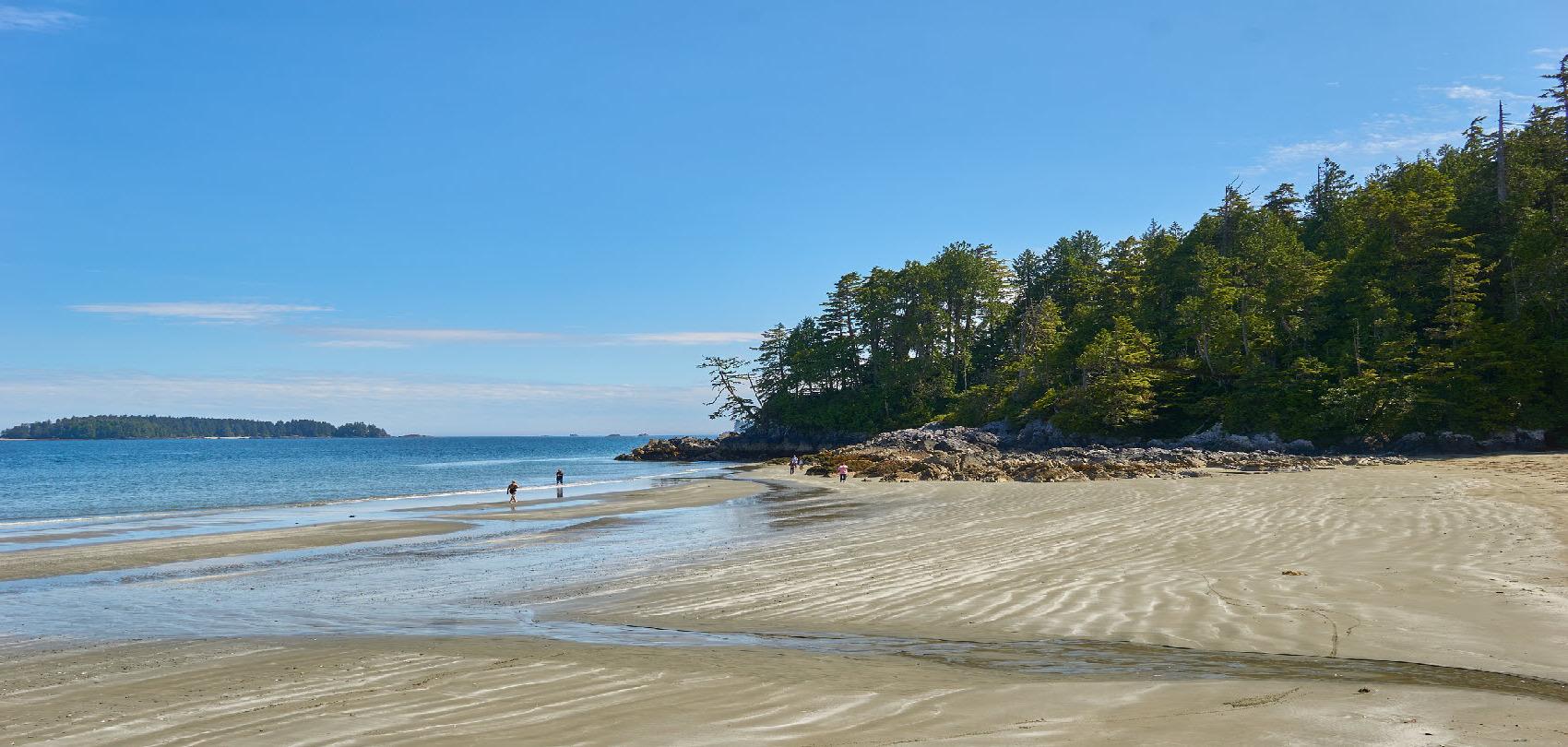Beach, Tofino