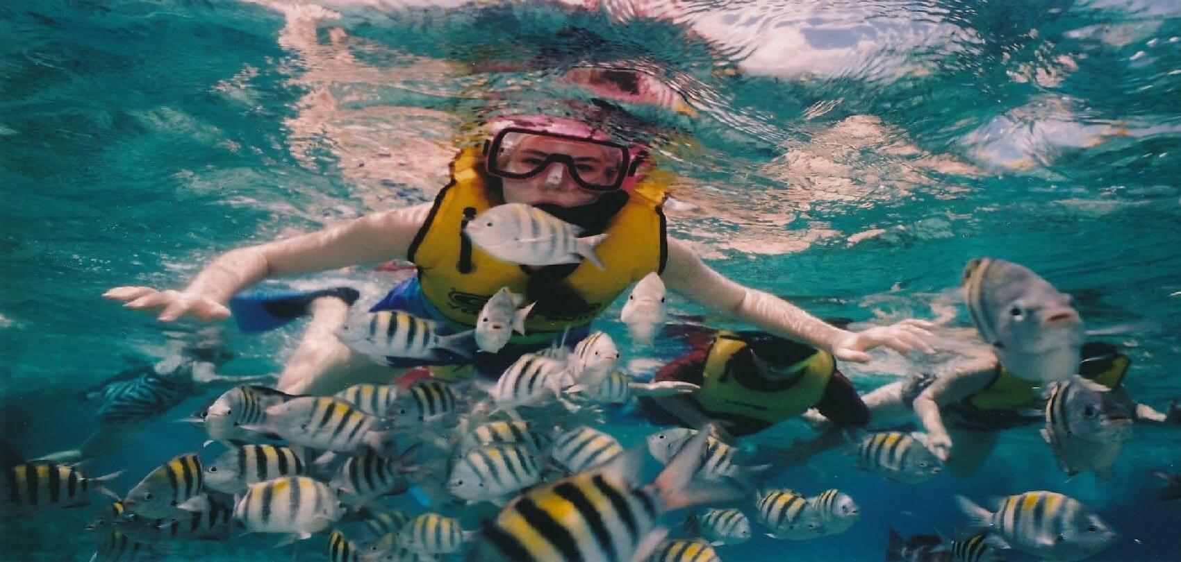 Snorkeling, Cozumel